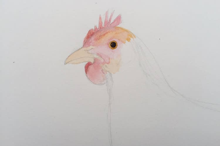 Chicken Painting In Progress