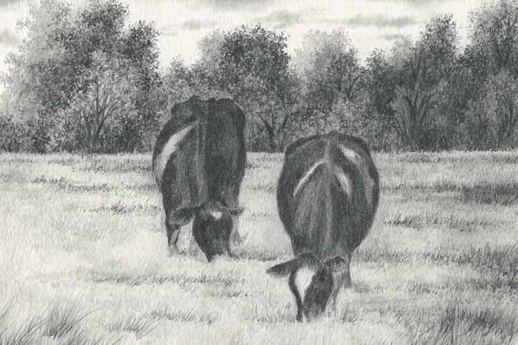 Rainey Dewey Art Cows